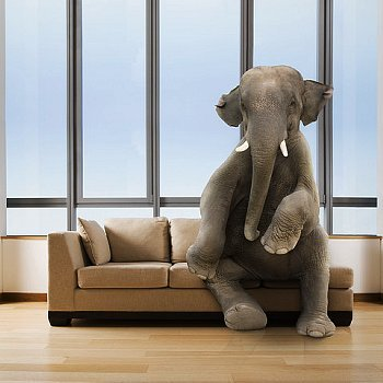U201cThe Elephant In The Living Roomu201d Part 6
