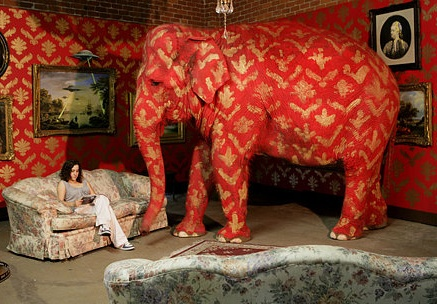 the elephant in the living room - The Elephant In The Living Room