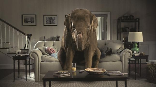 oh please lets talk about the elephant in the living room can i talk about my loss sadness or my illness with you and not have you look away - The Elephant In The Living Room